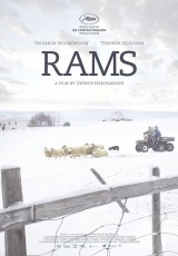 Rams_cartel